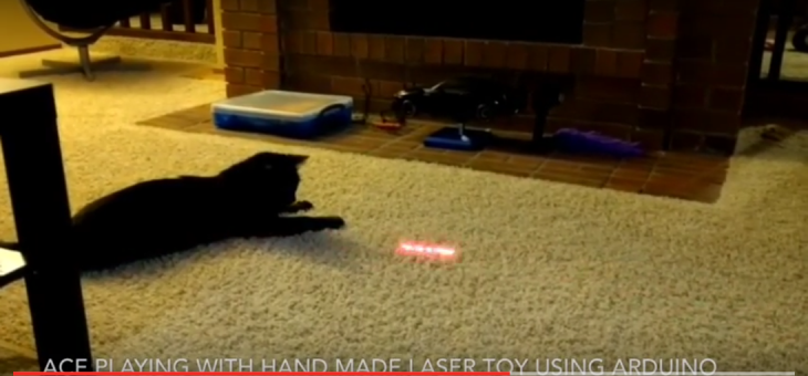 Arduino – Simple cat toys